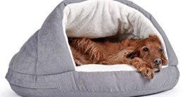 Hundebett oder Hundehöhle